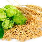 cereales en la alimentación del bebé
